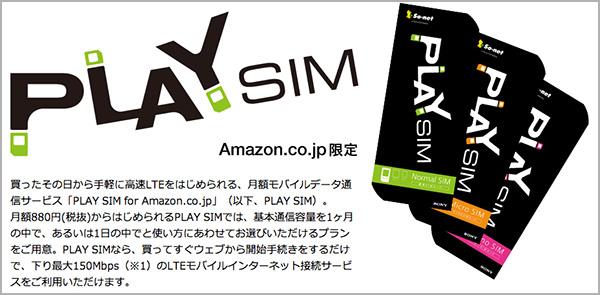 play-sim