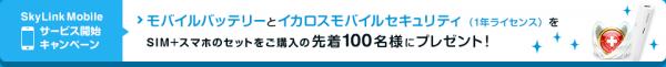 skylinkmobile_campaign_20140901