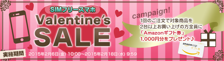 goo-simseller_sale_20150206_13